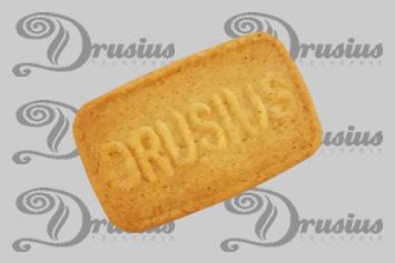 Drusius